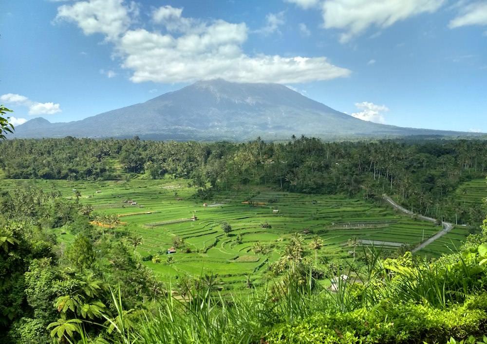 Bali Agung view