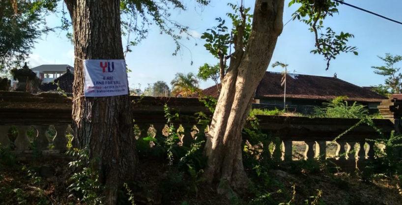 8 are for sale in Nusa Dua - 01